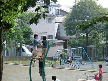 上練馬公園の画像1