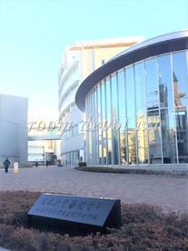 日本大学芸術学部 江古田校舎(キャンパス)の画像1