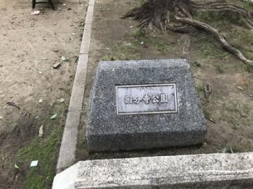国分寺公園の画像1