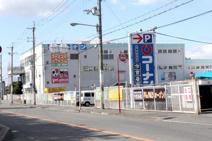 ホームセンターコーナン金岡蔵前店