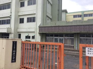 さいたま市立指扇小学校の画像3