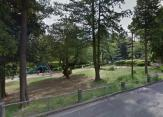 藤が丘公園
