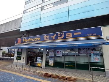 ヘルスケアセイジョー矢野口店の画像1