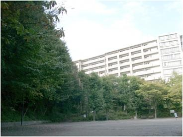 山口白山公園の画像1