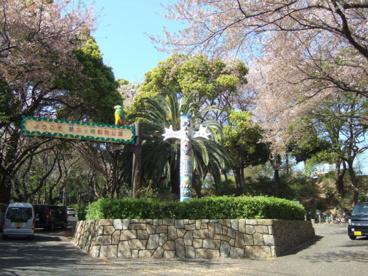 夢見ヶ崎動物公園の画像1