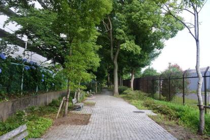 平間緑道 上平間付近の画像1