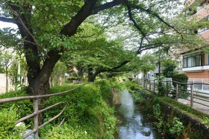 二ヶ領用水・今井上町緑道の画像1