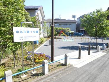中丸子第1公園 の画像1