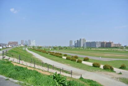 多摩川 古市場付近の画像1