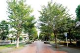 千葉市 おゆみ野なつのみち公園
