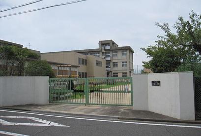 沢池小学校の画像1