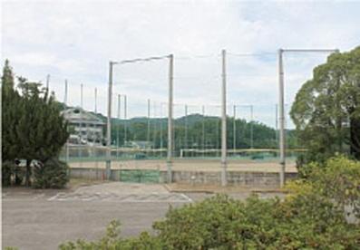 箕面市立総合運動場野球場の画像1