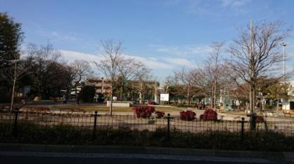 小泉公園の画像1