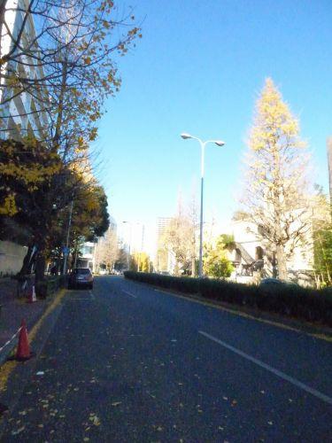 昼間のプラチナ通りの画像