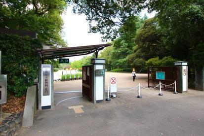 京都府立植物園の画像1