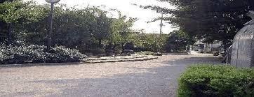 成田西公園の画像1