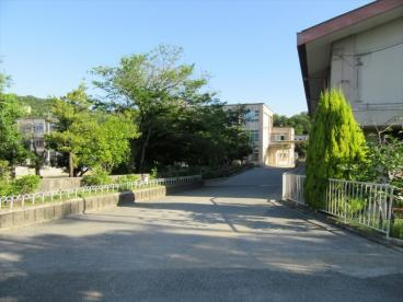修学院小学校の画像1