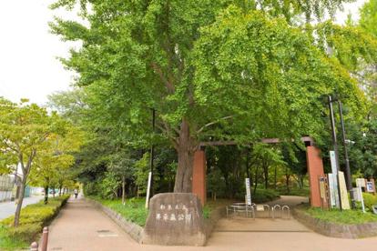 井草森公園の画像1
