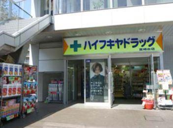 ハイフキヤドラッグ宮崎台駅前店の画像1