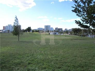 新田さくら公園の画像1