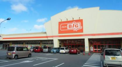 ザ・ビッグエクスプレスはにんす宜野湾店の画像1