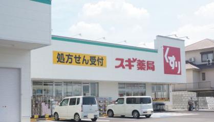 スギドラッグ碧南坂口店の画像1
