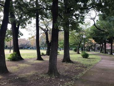 柏の宮公園の画像3