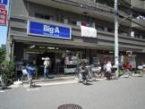 ビッグ・エー板橋大山店