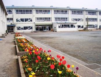 松林小学校の画像1