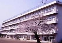 秦野市立大根小学校