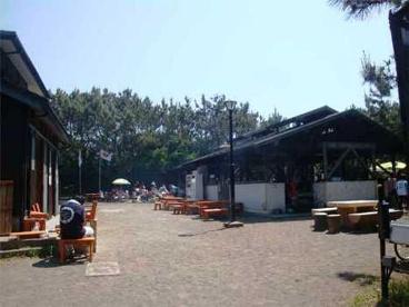 柳島キャンプ場の画像1