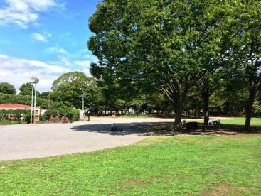 茅ケ崎市 中央公園の画像1