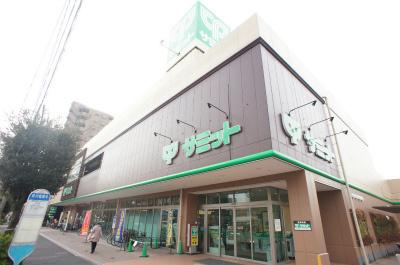 サミットストア野沢龍雲寺店の画像2