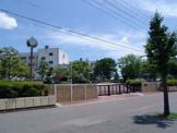 桃ヶ丘小学校