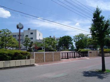 桃ヶ丘小学校の画像1