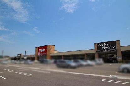 ペットショップ ワンラブ ホームセンターバロー小牧岩崎店の画像1