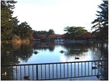 敷島公園の画像2