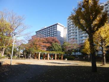 立花公園の画像1