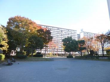 立花一丁目団地 広場の画像1
