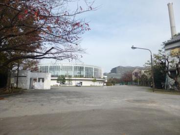 墨田区立 新平井橋公園の画像1