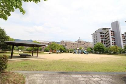 折戸公園の画像1