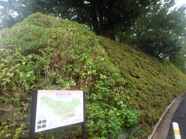 菊名桜山公園の画像1