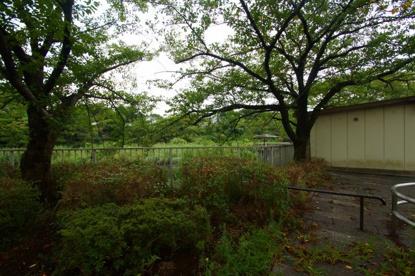 岸根公園の画像1