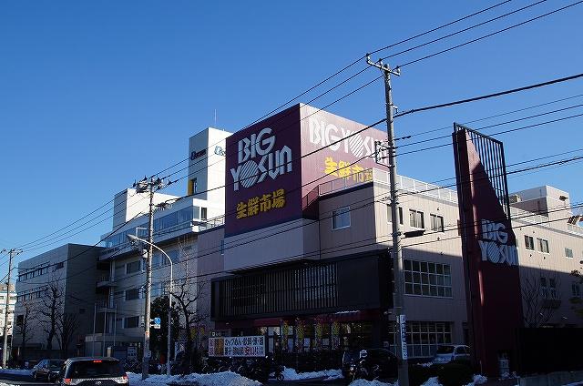 ビッグヨーサン「綱島樽町店」の画像