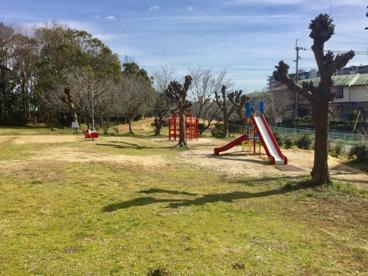 丸池公園の画像1