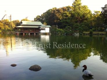 清澄庭園の画像2