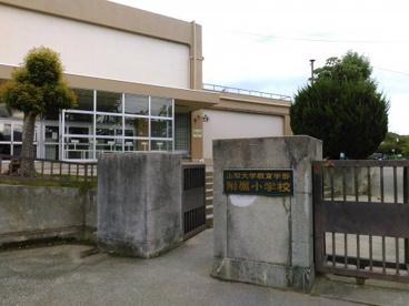 国立大学法人山梨大学教育学部附属小学校の画像1