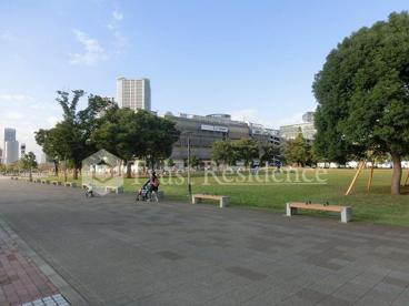 豊洲公園の画像2