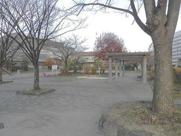 木月住吉南公園の画像1