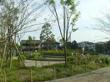 町田堀ふれあい公園(新塚越)の画像1